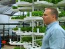 Vertical Farming Takes Root